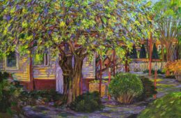 Hidden Treehouse